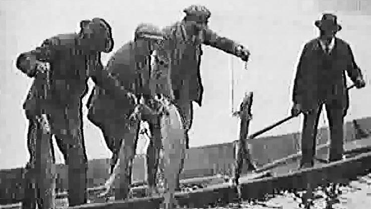 Hanspeter Meier und Helen Liebendörfer sammeln historische Bilder wie das der Rheinfähre (bz von Mittwoch) aus dem Jahre 1906. Rechts ein Standbild aus einem Film von 1927 über Lachsfischer auf dem Rhein.