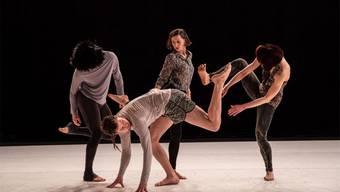 Das tänzerische Spiel des Ensembles ist von Hunden inspiriert.