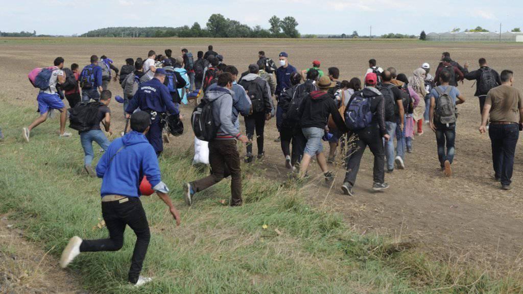 Migranten in Ungarn: Eine Kamerafrau eines ungarischen Internetfernsehens wurde entlassen, weil Bilder von ihr aufgetaucht waren, auf denen sie Flüchtlinge tritt. (Symbolbild)