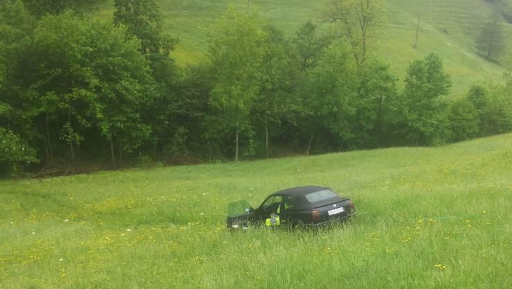 Aus noch ungeklärten Gründen geriet der Wagen in einer Kurve von der Strasse.