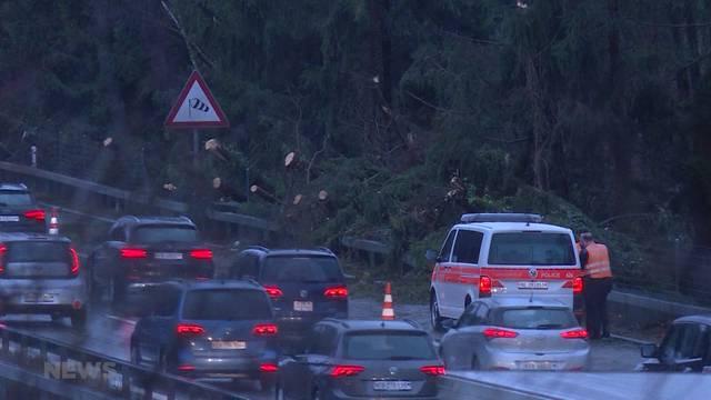 Baum versperrt A1 bei Mühleberg