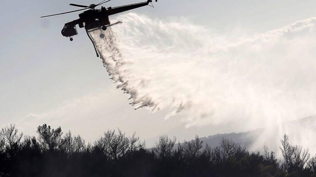 Neue Waldbrände in Griechenland und auf Zypern ausgebrochen