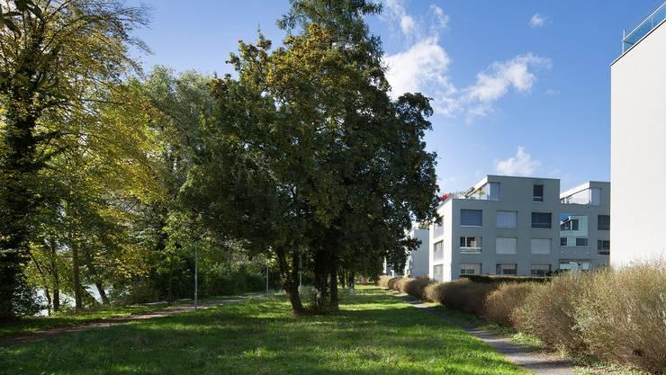 Mit der Wohnüberbauung Aarepark wurde auf dem Areal des früheren städtischen Werkhofs durch Transformation neue Identität geschaffen. Dank einer klugen Bepflanzung konnte auf Barriere bildende Elemente wie Zäune oder Trennwände verzichtet werden.