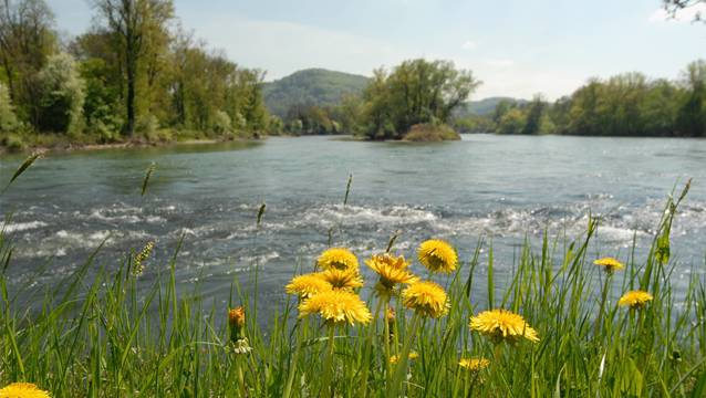 Entlang der Gewässer wird die Nutzung viel zu stark eingeschränkt. Mit rund 3000 Kilometern Fliessgewässer ist ist unser Kanton am stärksten vom Bundesgesetz betroffen.