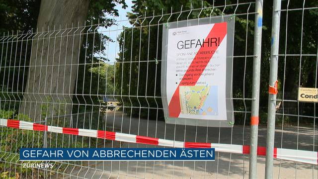 Fussgängerweg am Zürichsee aus Sicherheitsgründen gesperrt