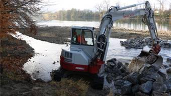 Dort wo der Etzgerbach in den Rhein mündet, hat die Fischerzunft aus Laufenburg mehrer Tonnen Beton aus dem Wasser entfernt.