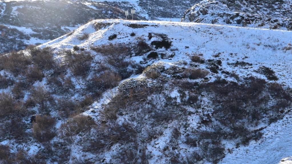 Bei einem Selbstunfall auf der schneebedeckten Oberalppassstrasse sind am Samstagmittag vier Autoinsassen verletzt worden.