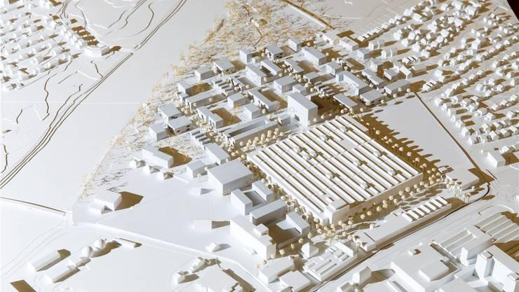 Halle und mögliche Anordnung von Bauten (dunklere Farbe). Dieser Studienvorschlag wird weiterbearbeitet.