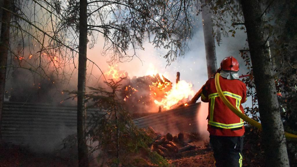Holzunterstand abgebrannt – Polizei sucht Zeugen
