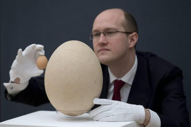 Das grösste Ei der Welt