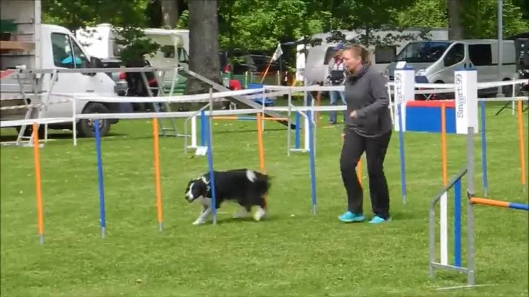 Agility Grenchen 2019