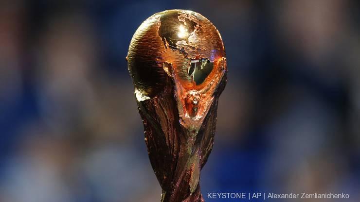 Wer wird dieses Jahr die WM gewinnen?