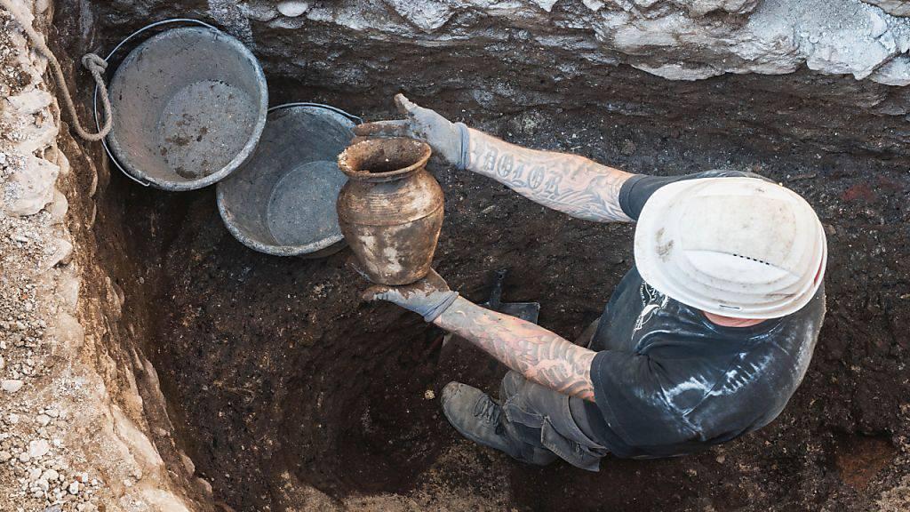 Mittelalterliches Affenskelett auf Basler Baustelle entdeckt