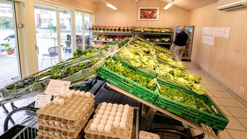 Verband will Bauern helfen, vom Hofläden-Boom zu profitieren