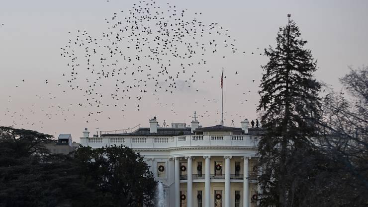 Sechs Mitarbeiter des Weissen Hauses in Washington haben gegen das Gebot der politischen Neutralität von US-Behörden verstossen. (Archivbild)