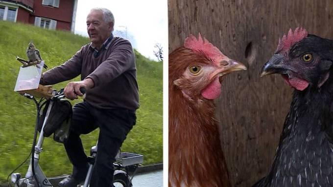 «Tierisch»: Wenn Mann einen Vogel hat